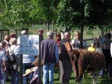 Eindrücke Bauernhof-Rallye - für jung und alt