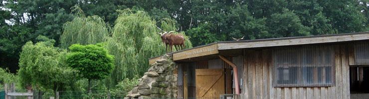 Haustierpark der Arche Alfsee