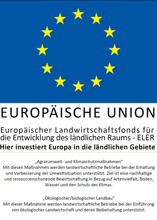 Gefördert durch die EU